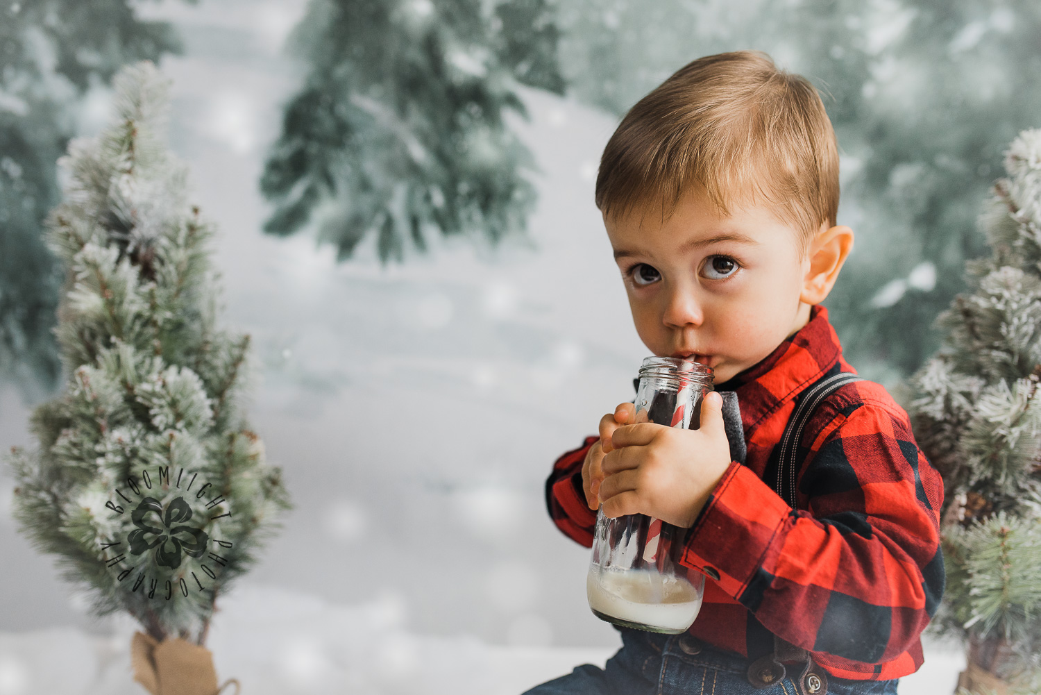 Toronto-NorthYork-Christmas-Minis-Holiday-Photographer-baby-children-kid-photo (51).jpg