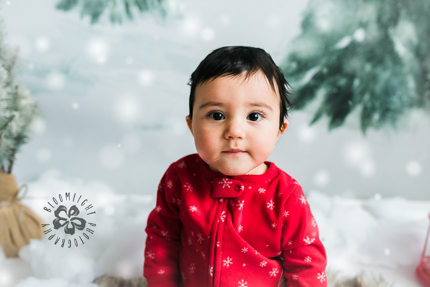 Toronto-NorthYork-Christmas-Minis-Holiday-Photographer-baby-children-kid-photo (55).jpg