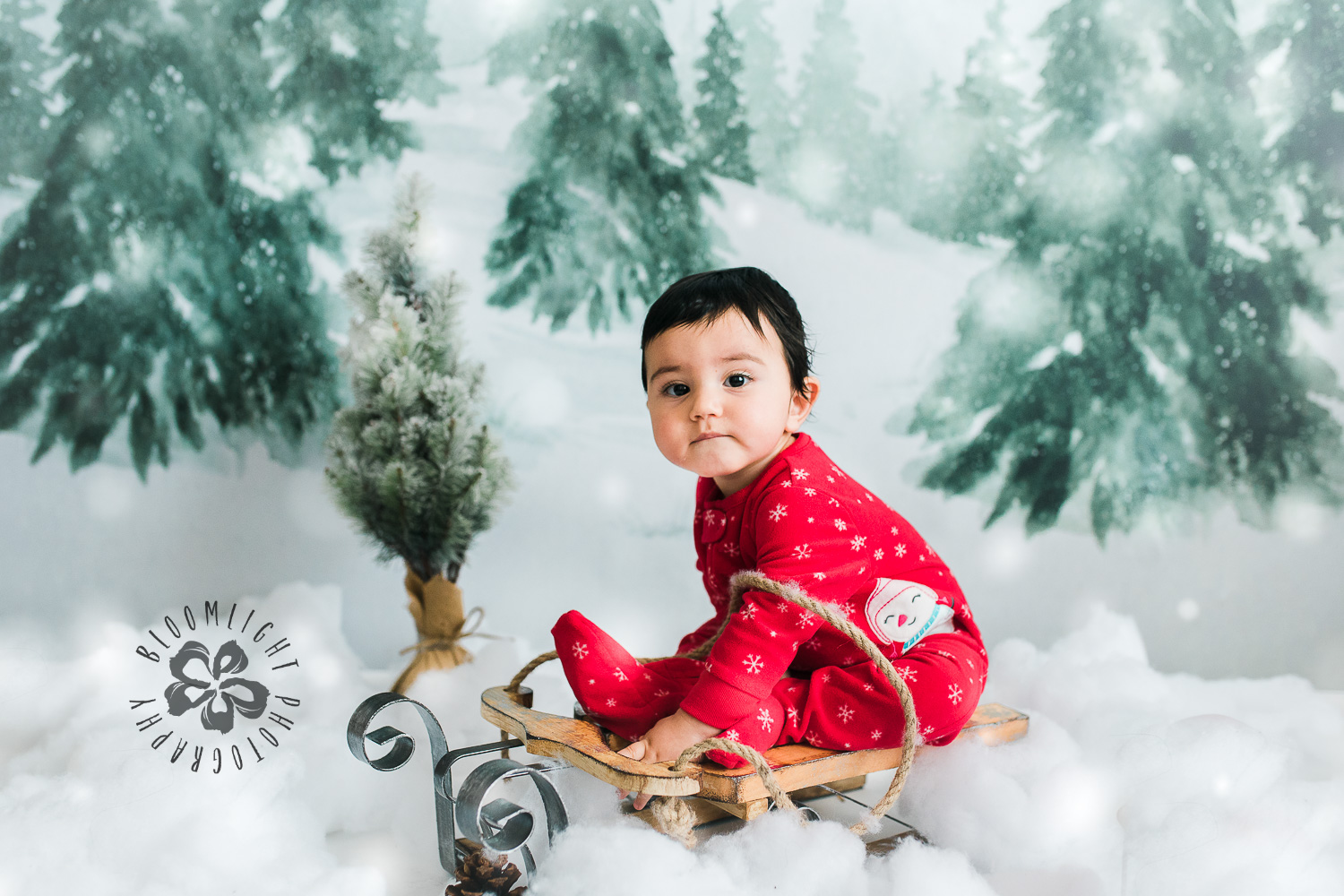 Baby wearing red sitting in a sled