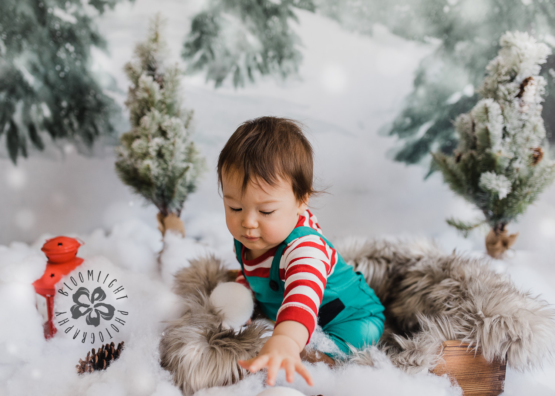 Toronto-NorthYork-Christmas-Minis-Holiday-Photographer-baby-children-kid-photo (23).jpg