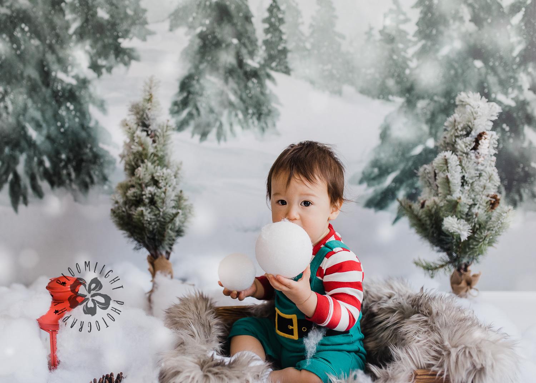 Toronto-NorthYork-Christmas-Minis-Holiday-Photographer-baby-children-kid-photo (26).jpg