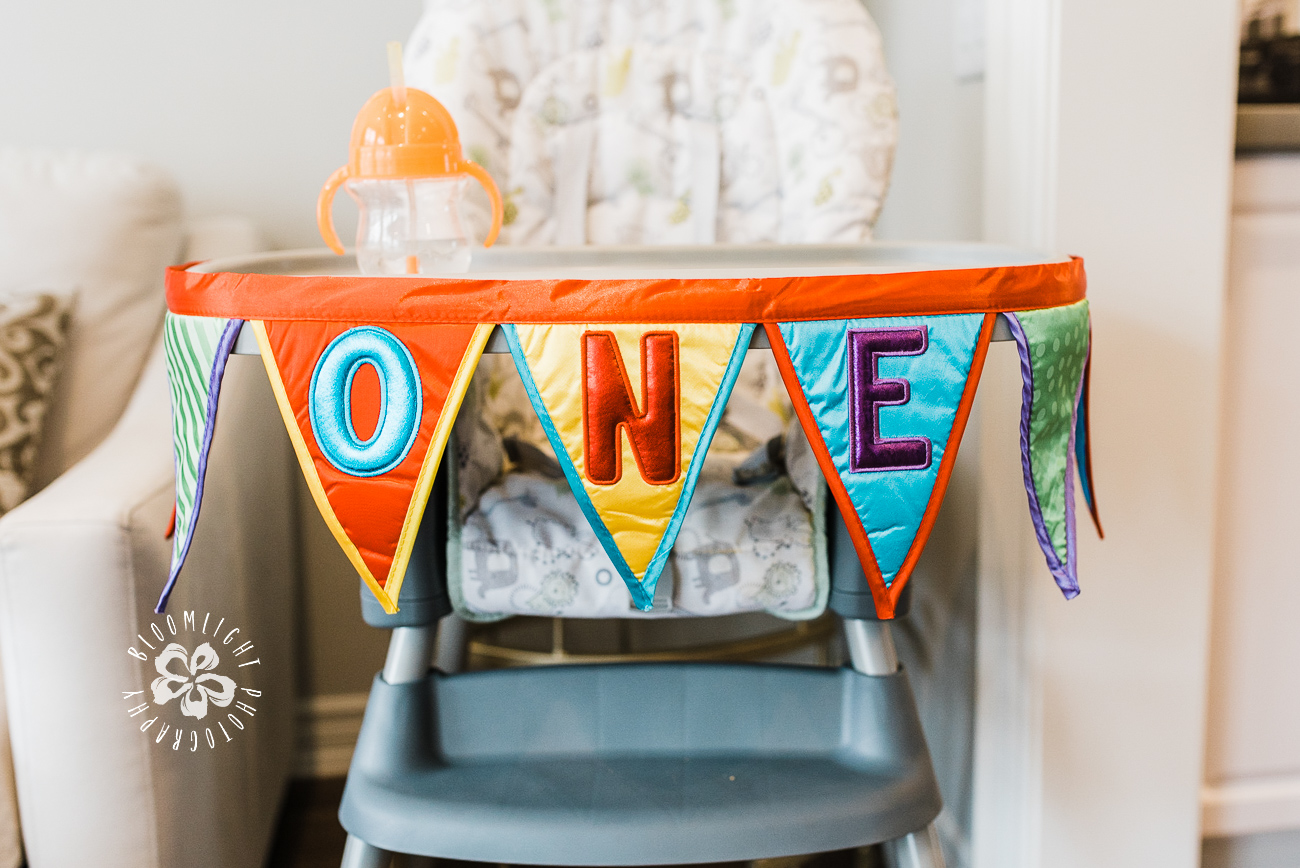 Happy-First-Birthday-Picture-Bloomlight-Photography.jpg