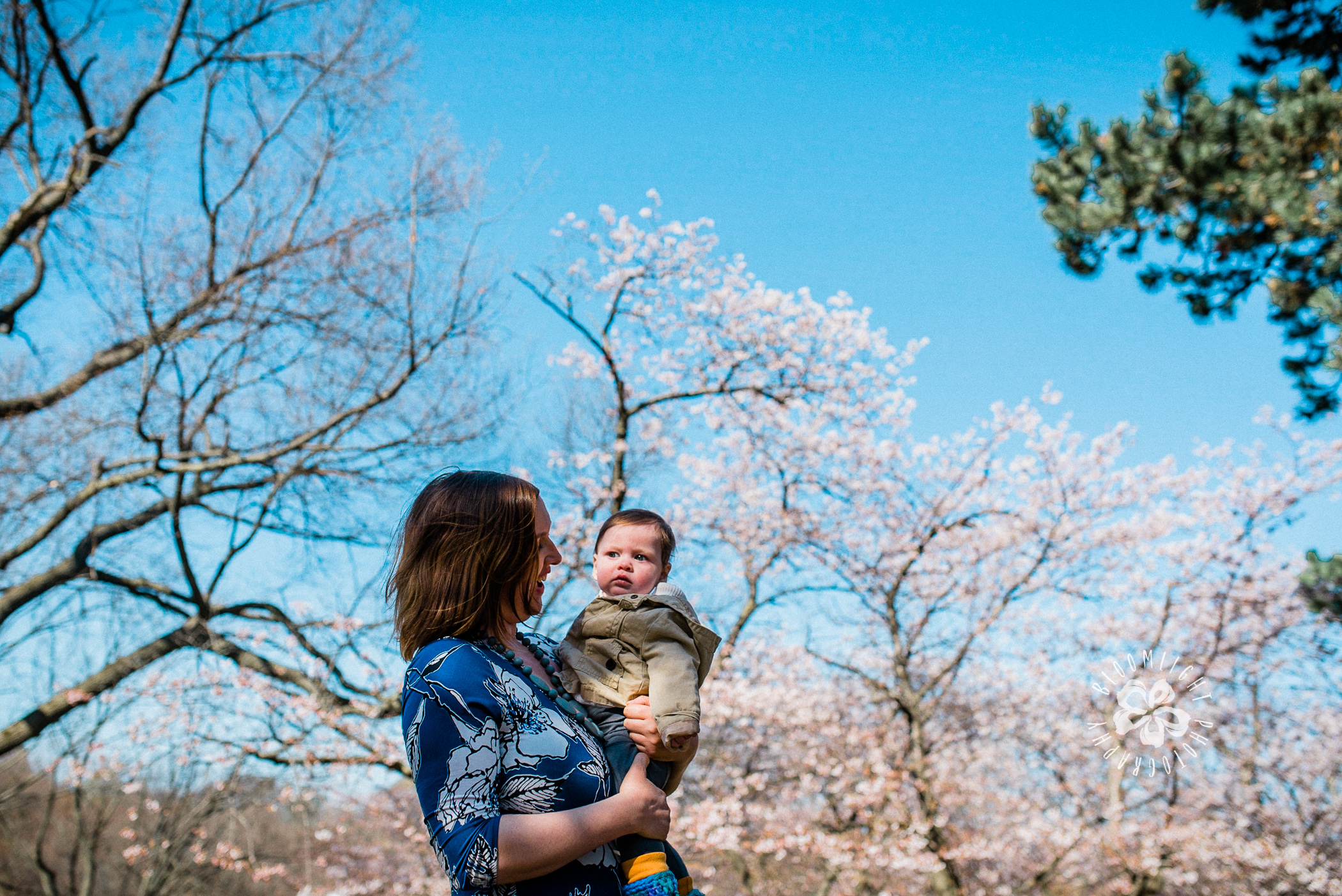 Toronto-cherry-blossom-mothers-day-photo-session-Bloomlight-Photography.JPG