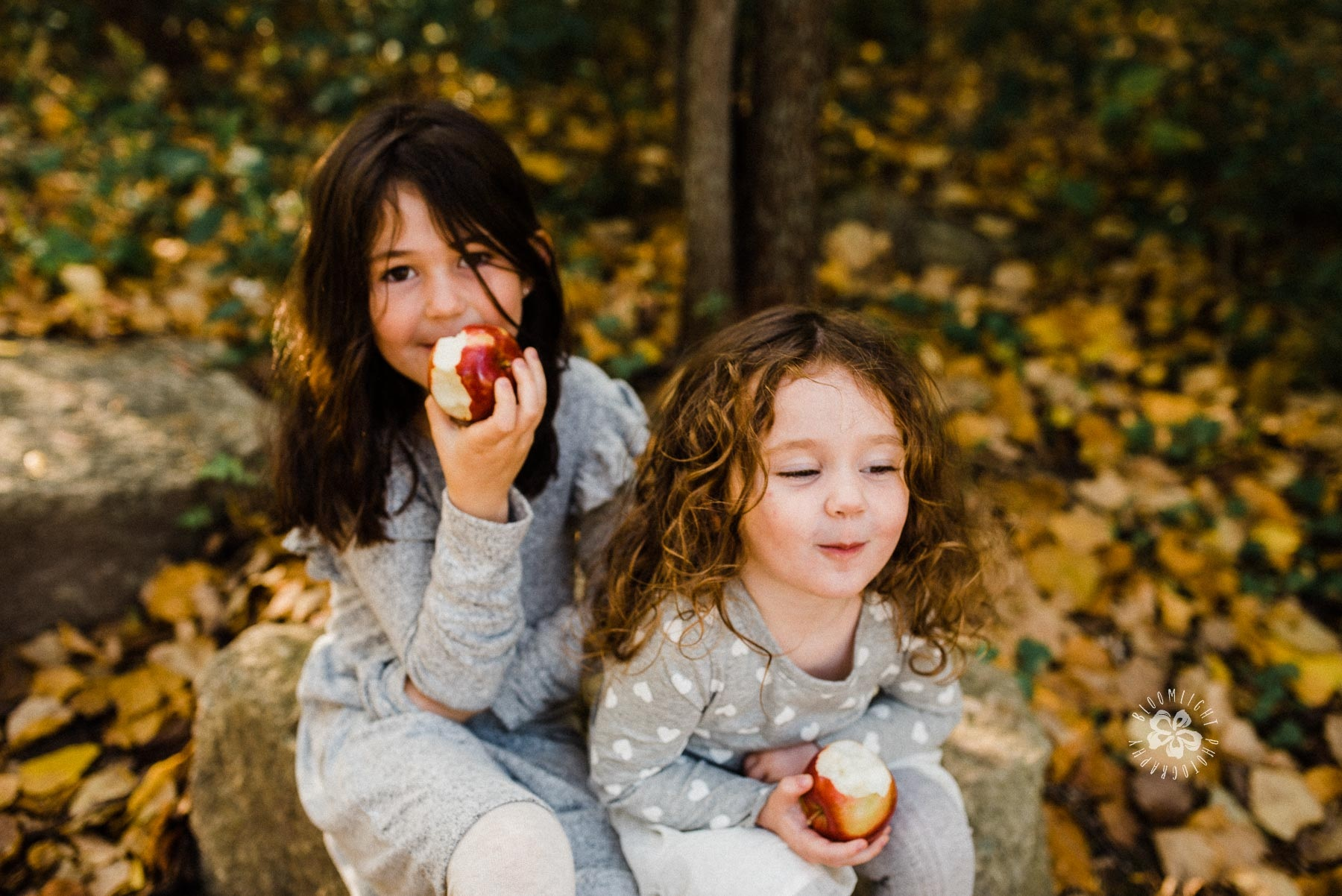 two cute little sister sitting besides each other, laughing and enjoy eating red apple.