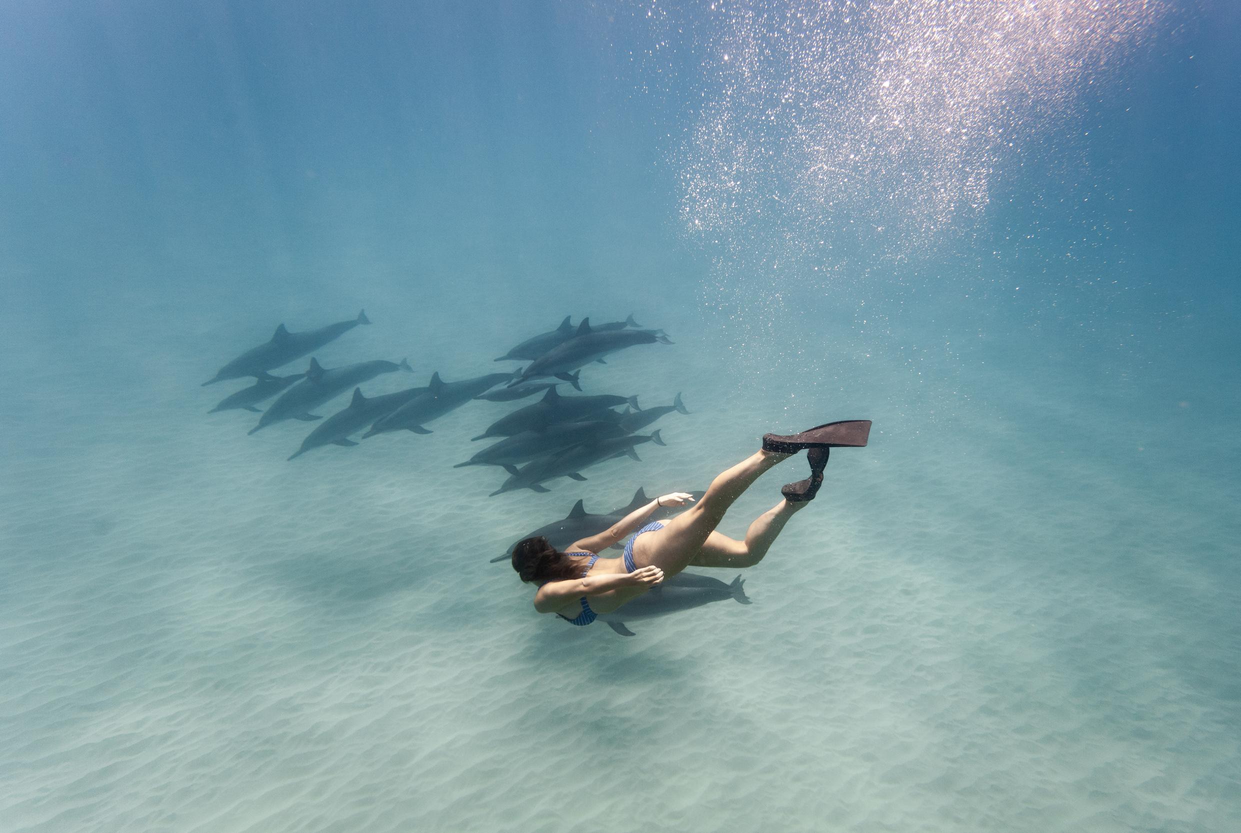 Four-Seasons-Oahu-Ko-Olina-Underwater-Photographer-Ola-Collective-18.jpg