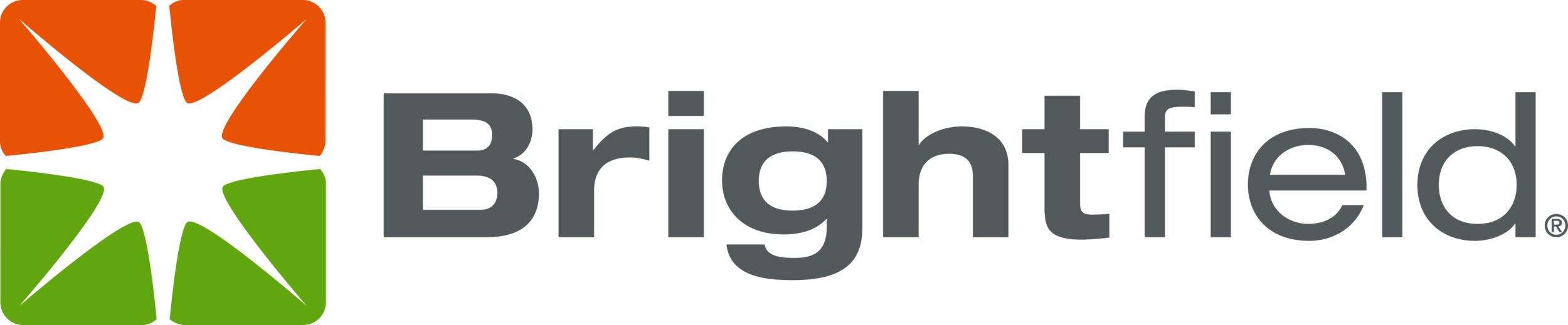 BT-604-04-01_Brightfield logo horizontal_fnl (1).png