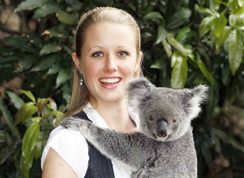 Koala Cuddle Lone Pine