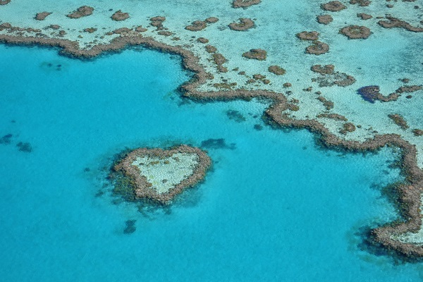 Scenic Flight over the Heart Reef