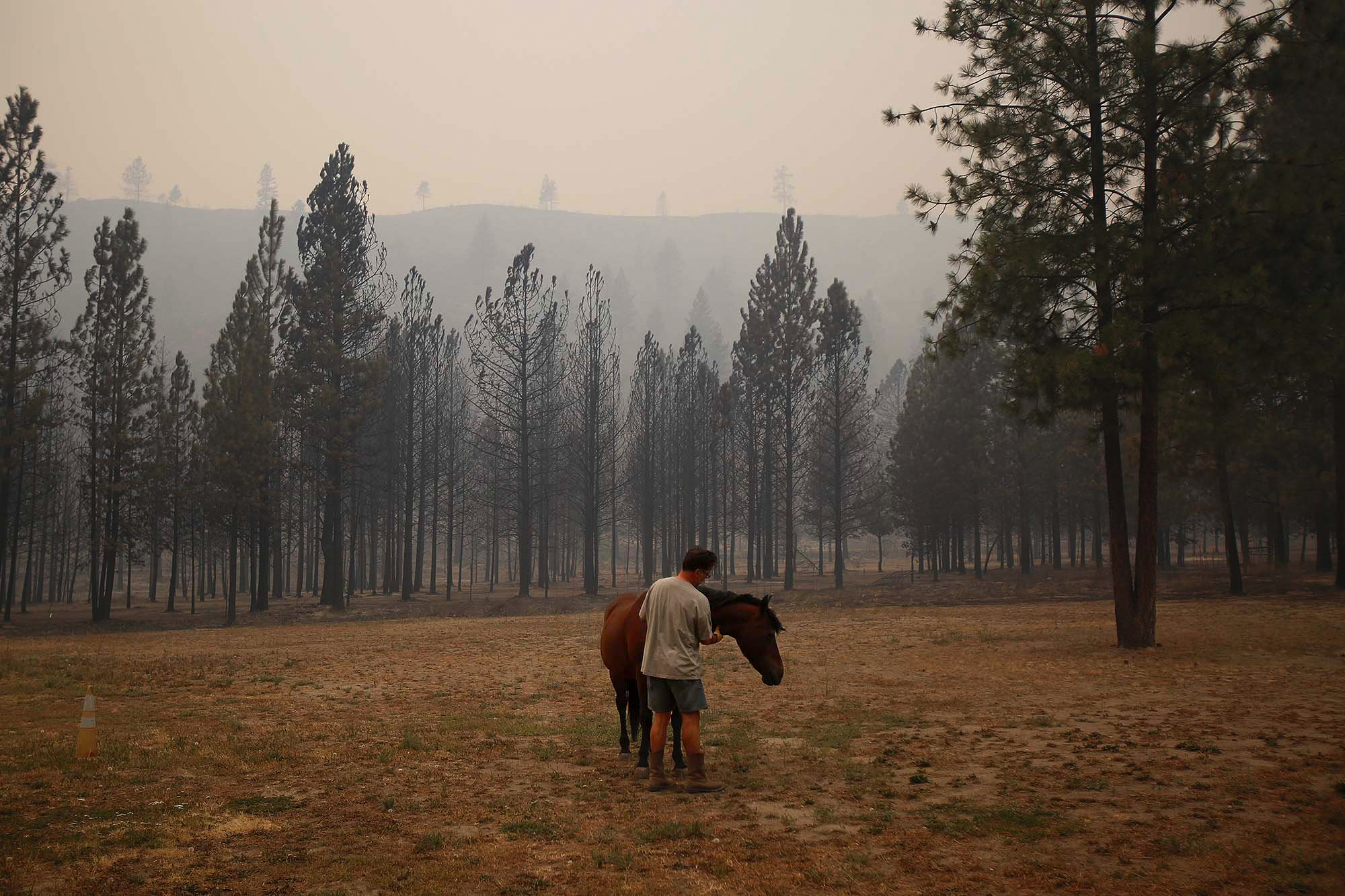 "Todd Quinn calms down his spooked horse after it survived through the night and the fires in the Antoine Creek area on Saturday, Aug. 15, 2015. Quinn lost another horse and three goats, but his house managed to survive the firestorm. ""I feel blessed,"" said Quinn. ""One Word. Blessed."""