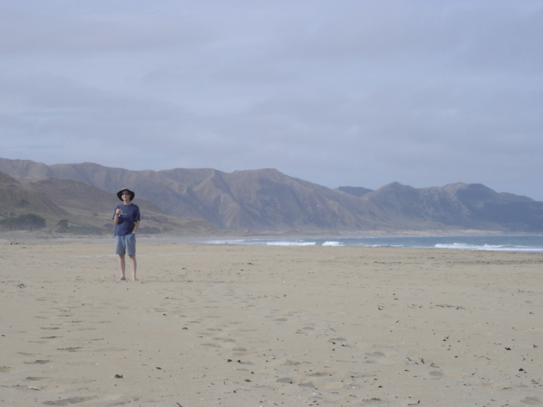 ocean beach hawkes bay nz.jpeg