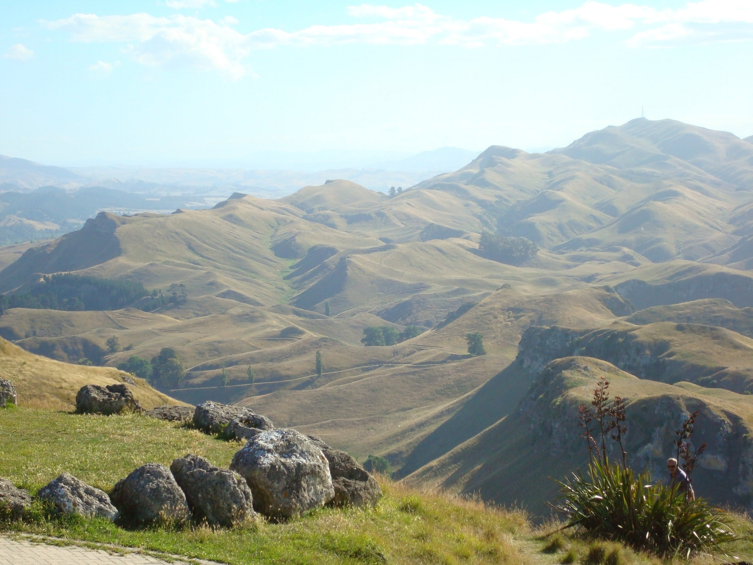 This photo is from another year, when it was much greener in Hawke's Bay. It's such a beautiful view from the top of TeMata Peak that I just had to add it in here too!