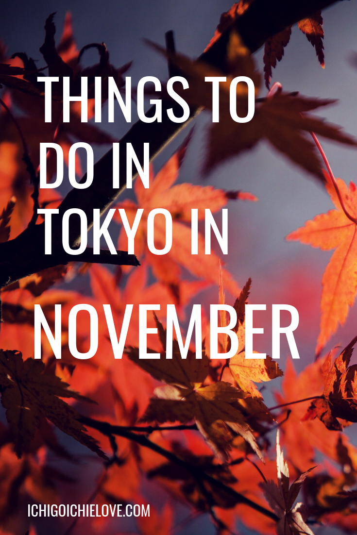 Things to do in Tokyo in November ichigoichielove.png