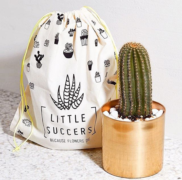 Ahhhhh I have a huge announcement! 🌵 ⠀⠀⠀⠀⠀⠀⠀ Have you ever heard of the startup @littlesuccers? ⠀⠀⠀⠀⠀⠀⠀⠀⠀ Yesterday, reached out to my DB of founders asking if any of them were interested in being my case study for my StartCon presentation next month. The presentation is focused on teaching founders how to double their growth with 4 basic startup marketing strategies. ⠀⠀⠀⠀⠀⠀⠀⠀⠀ The chosen startup would receive a full marketing strategy valued at $3,000 however, they would also be completely vulnerable. They would have to be willing for me to openly discuss their traffic and reveal their weaknesses and opportunities. ⠀⠀⠀⠀⠀⠀⠀⠀⠀ It's a ballsy thing for a startup! 😅 Anyway, I was TOTALLY overwhelmed with how many businesses were keen to do it. It was a hard choice, but I am happy to announce that I will be using @littlesuccers as my case study. ⠀⠀⠀⠀⠀⠀⠀⠀⠀ In order to practice for the big @startconhq event, I will be holding a webinar (for only 30 people) on the 22nd of October. ⠀⠀⠀⠀⠀⠀⠀⠀⠀ If you would like to hear the story of Little Succers (who now has over 30,000 followers 😲), and you want to see first hand how I would build her strategy to double her growth, then sign up to the webinar link in bio. ⠀⠀⠀⠀⠀⠀⠀⠀⠀ Here are the details: ⭐ Free, butlimited to only 30 people ⭐ Meet Tara, Founder ofLittle Succersand hear her story ⭐ Watch as I unpack her online traffic, dissect her competition and build her a strategy to double her growth. ⭐ When:Tuesday 22nd October, at 11 am (NSW time) ⠀⠀⠀⠀⠀⠀⠀⠀⠀ If you miss it, you'll have to just get a ticket to StartCon and see it for yourself! No recordings will be made available. LINK IN BIO!!!! ⠀⠀⠀⠀⠀⠀⠀⠀⠀#startups #digitalmarketing #entrepreneurs #littlesuccers #succulents #ladystartups #startups #startcon
