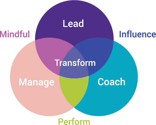 Focus Leadership Coaching Multi-dimentional Manager