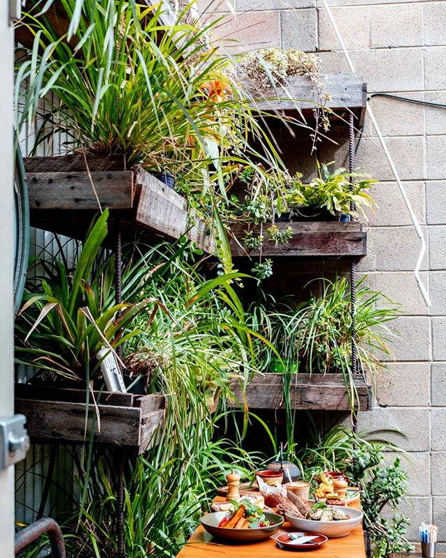 Substation Cafe is your oasis away from the city. Come and relax in our sunlit cafe amongst the greenery.  #green #plants #foodstagram #delicious #breakfastclub #cafe #sydneyfoodshare #sydneycafes #sydneyfoodie #sydneyfood #sydneycafe #foodphotography #cafesydney #brunch #foodie #decor #goodfood #coffee #brunchclub #healthyfood #breakfast #sydneybrunch #sydneybreakfast #onthetable #alexandriasydney #zetland #sydneyeats #eeeeeats #redfern #newtownsydney