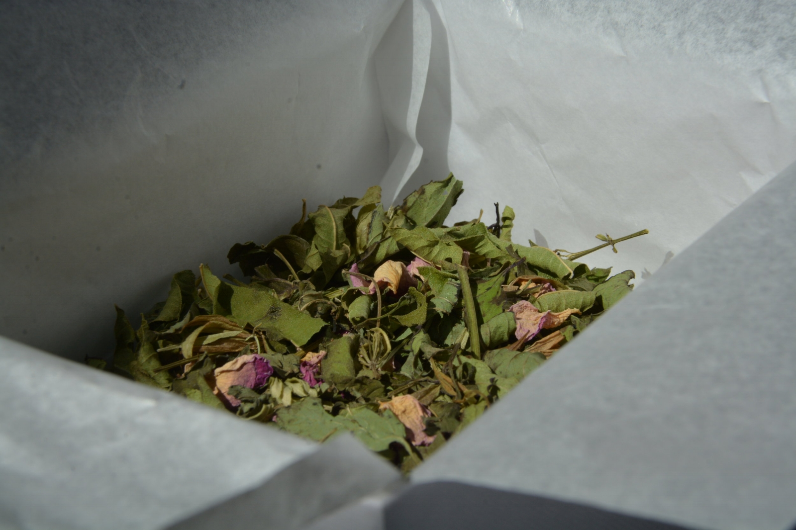 Plantes bretonnes 100% naturelles