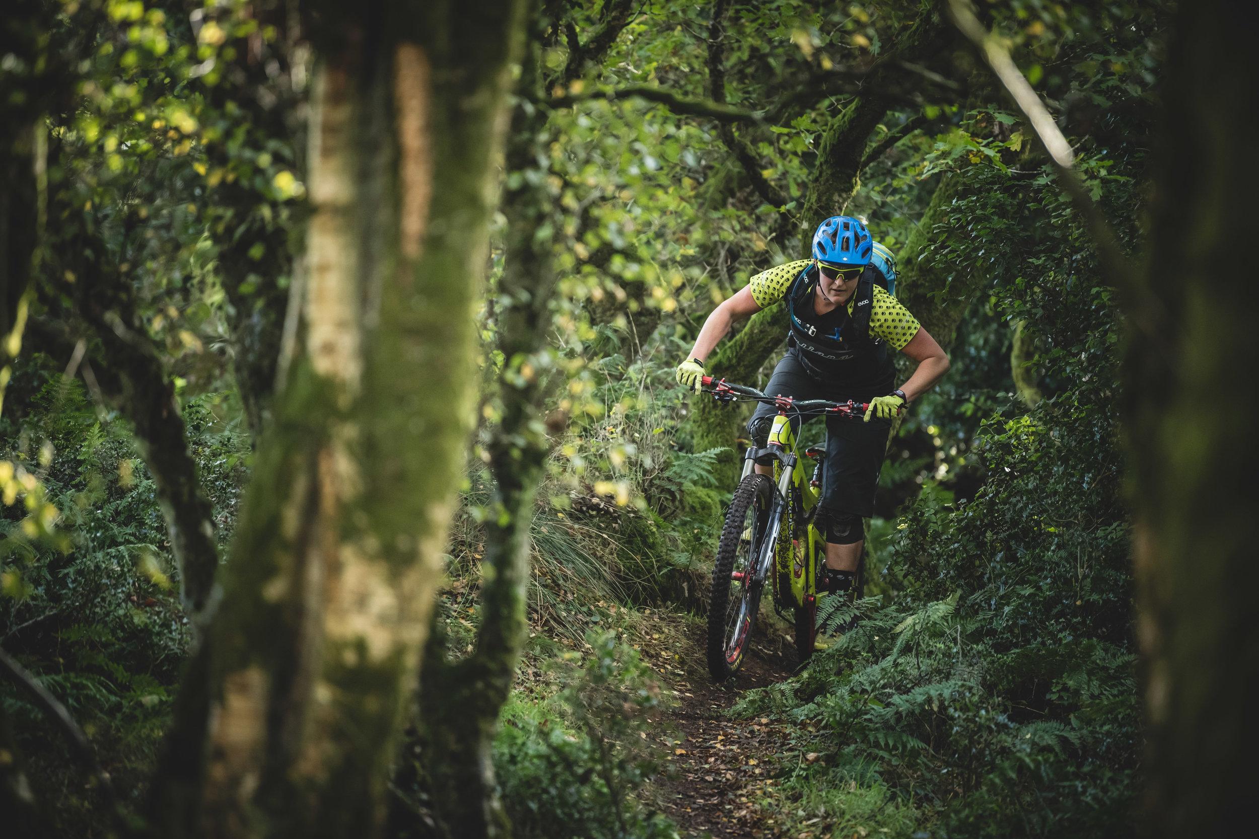 Woodland trail riding