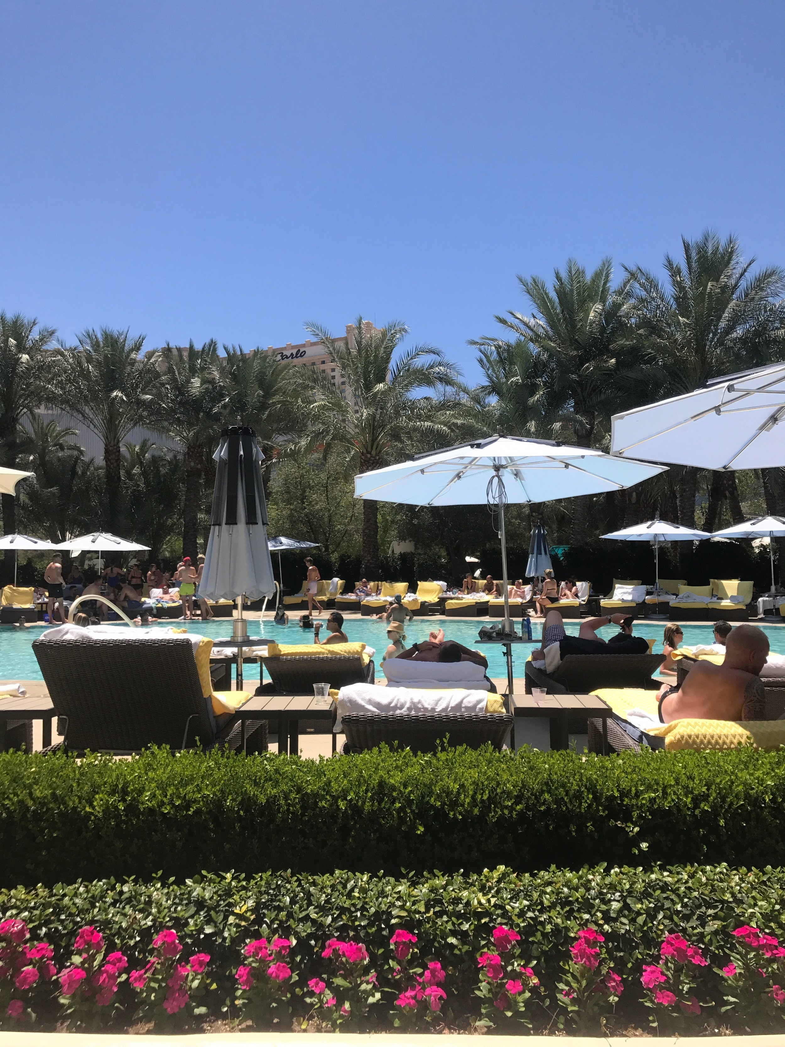 Poolside at the aria