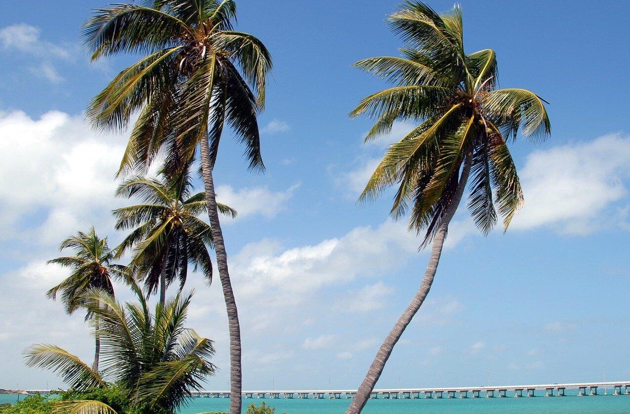 Florida Keys Miami