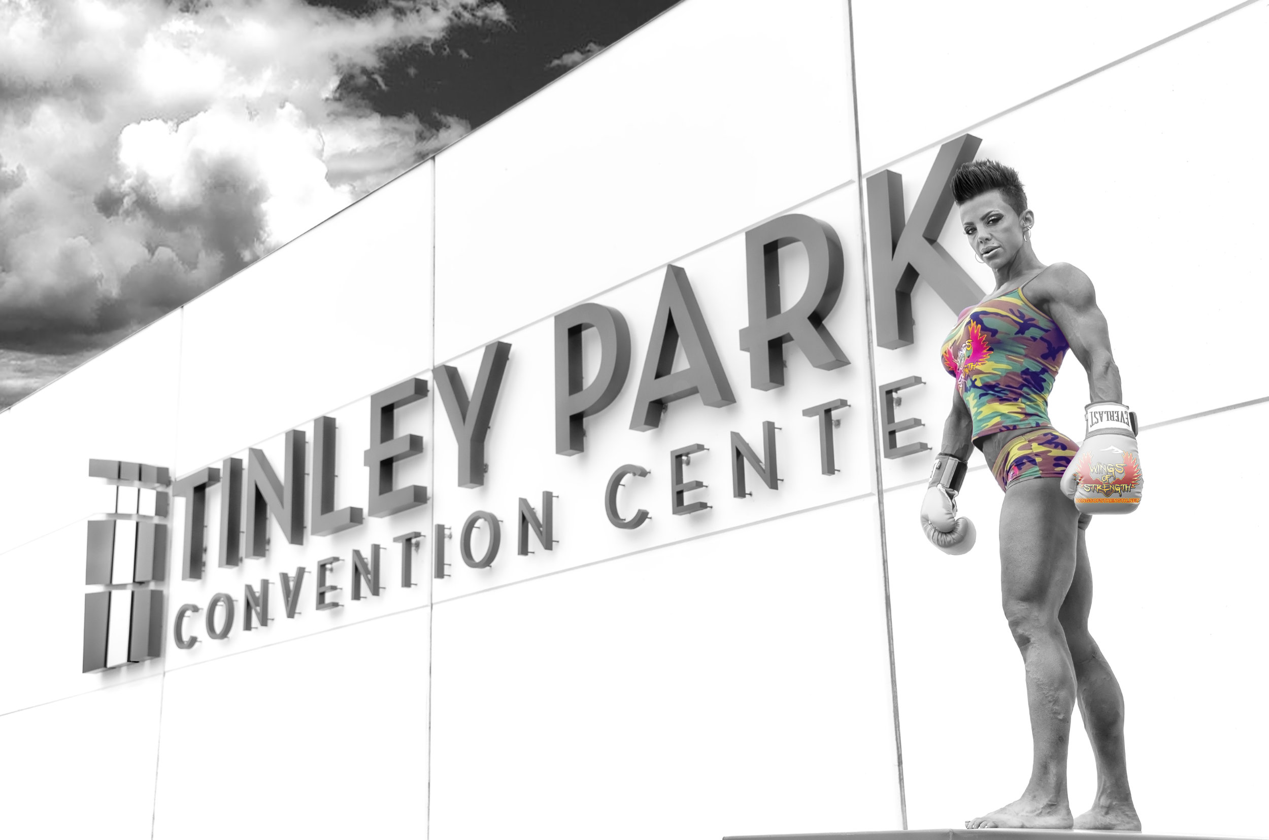 Wings Tindley Park.jpg