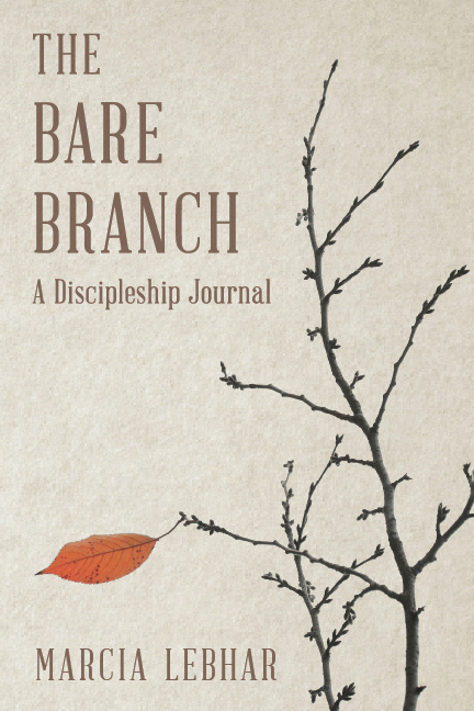 bare_branch_cover_6x9_final.jpg