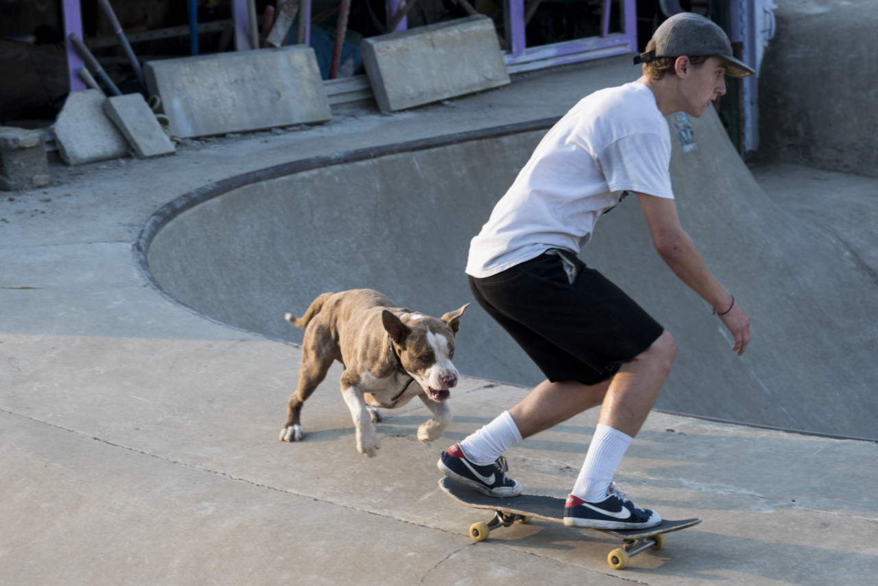 John Dwyre skates the Lula bowl with Sinbad the pit bull in chase.