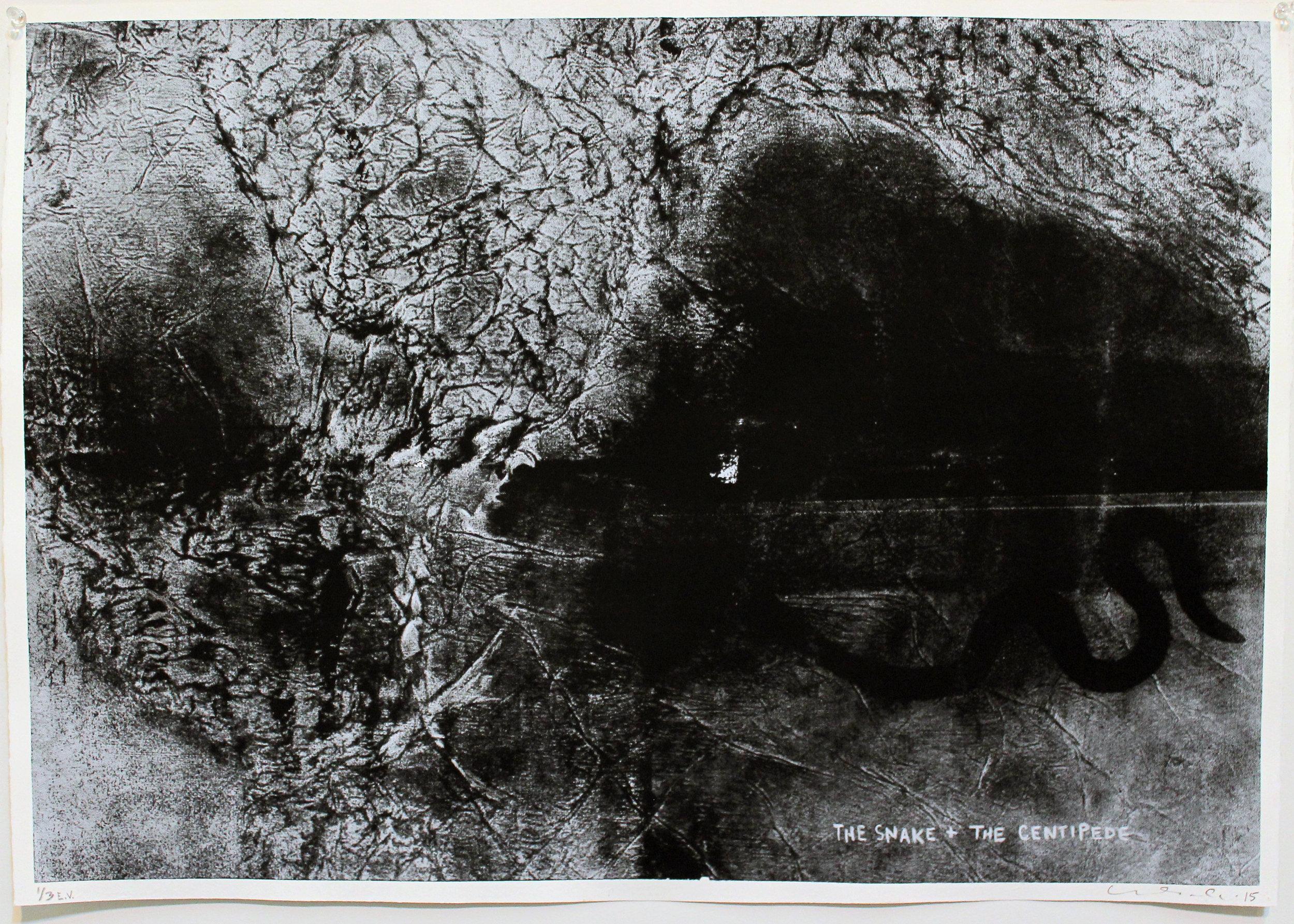 jesionowski-1708-auction-2015.jpg