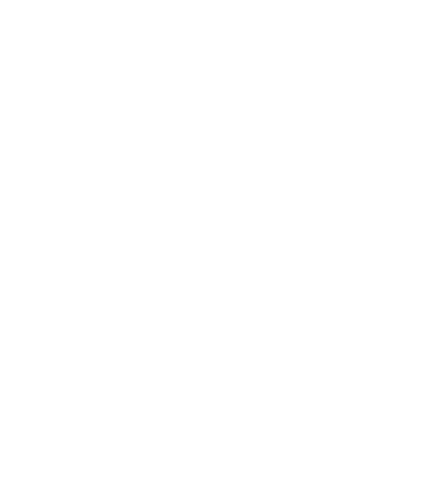Small Owl White.png