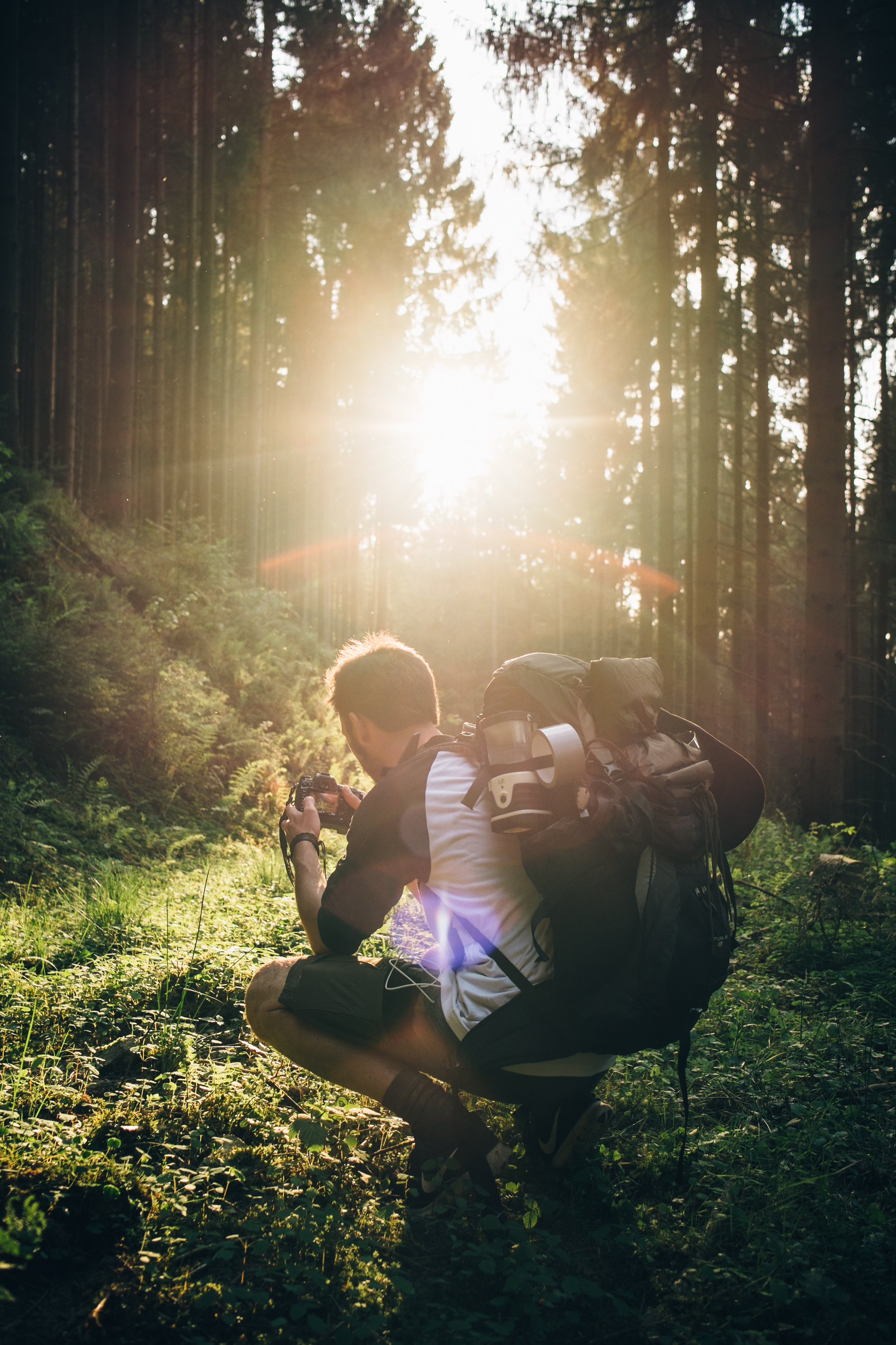 Best Hiking trips, trails, and tips for beginners : list by Angeloutdoors.com