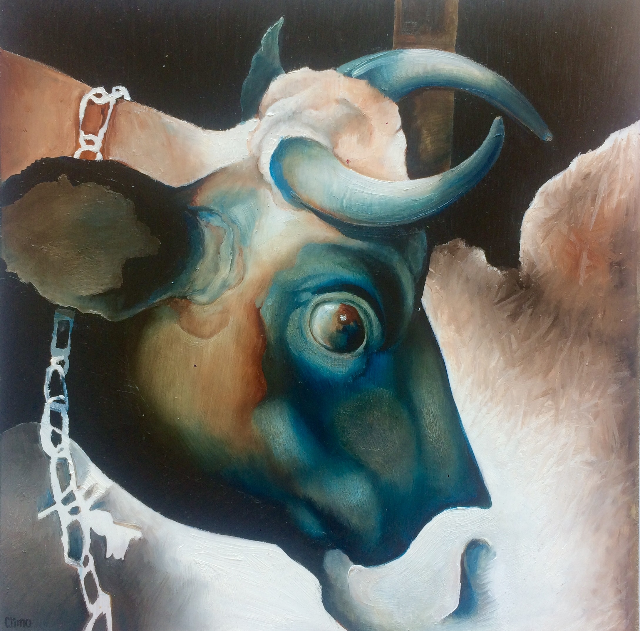 The Crooky Horned Cow