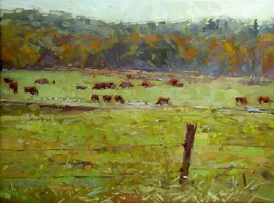 Union Rd., Cattle