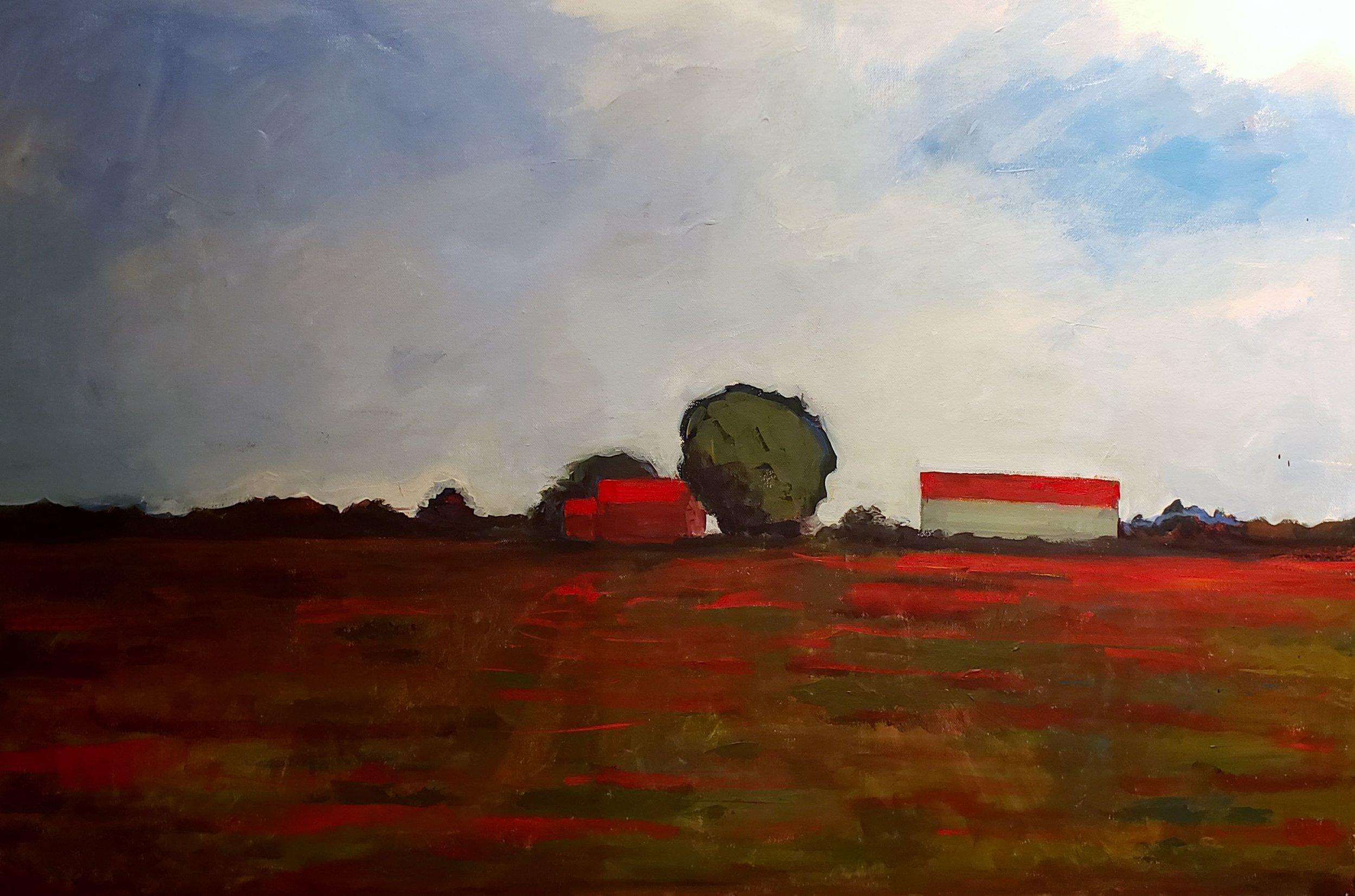 Tulip Fields  by Arlene Rice