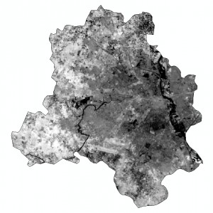 The city-state of Delhi, India as visualised from band 10 of Landsat 8's TIRS instrument.