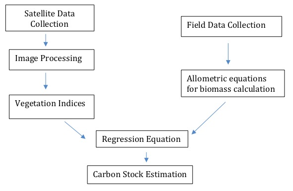The workflow for the estimation of Above Ground Carbon