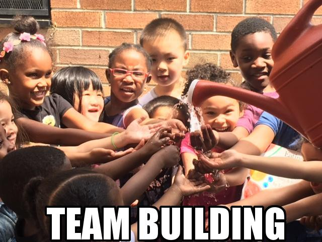 Team building 1.jpg