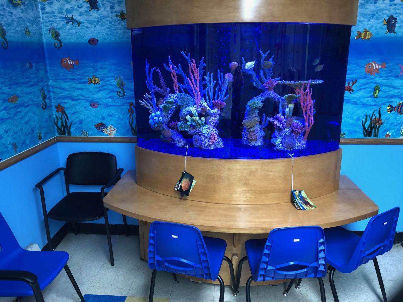 Therapy Aquarium