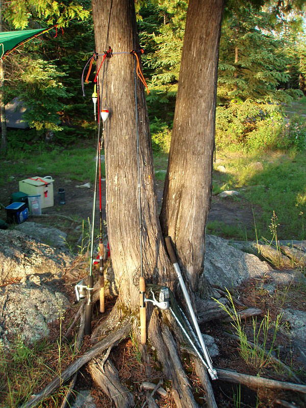Fishing Pole Tree Rack -