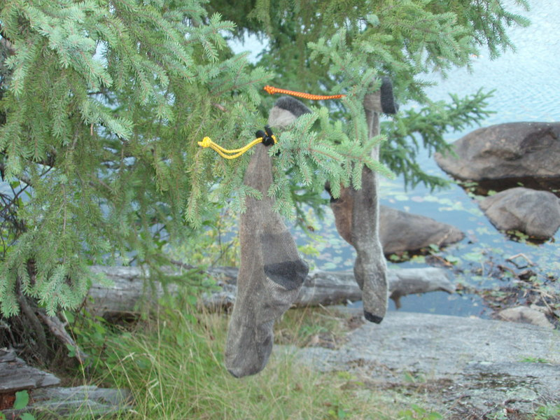 dry-sock-and-wet-gear-hang-from-tree-camping