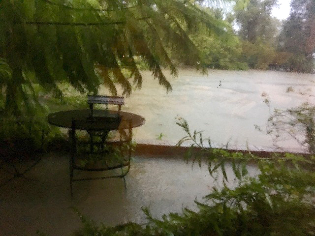 The bayou which typically sits 50 feet down three levels of ground in our backyard, was a mere three inches from the backdoor of the house…