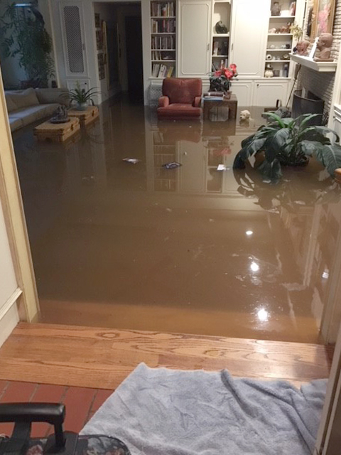 I turned the other way and was met with the carpet raising 3 feet in the air with water underneath it. The water was inside. I never could have imagined what I was seeing…