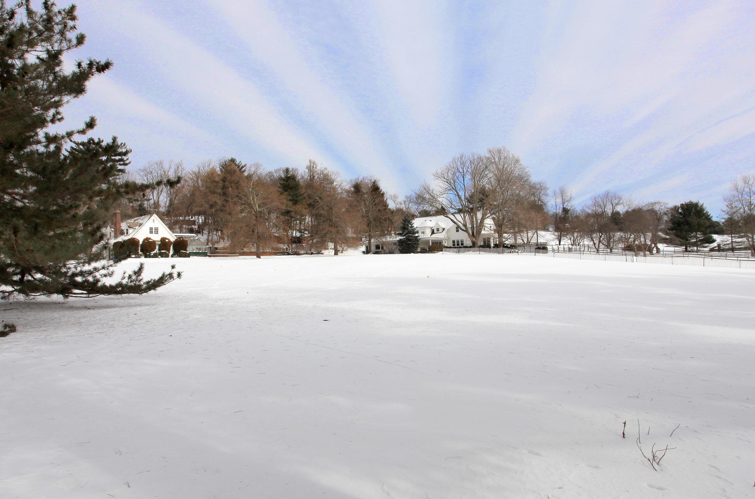 33 Buttonwood winter.jpg