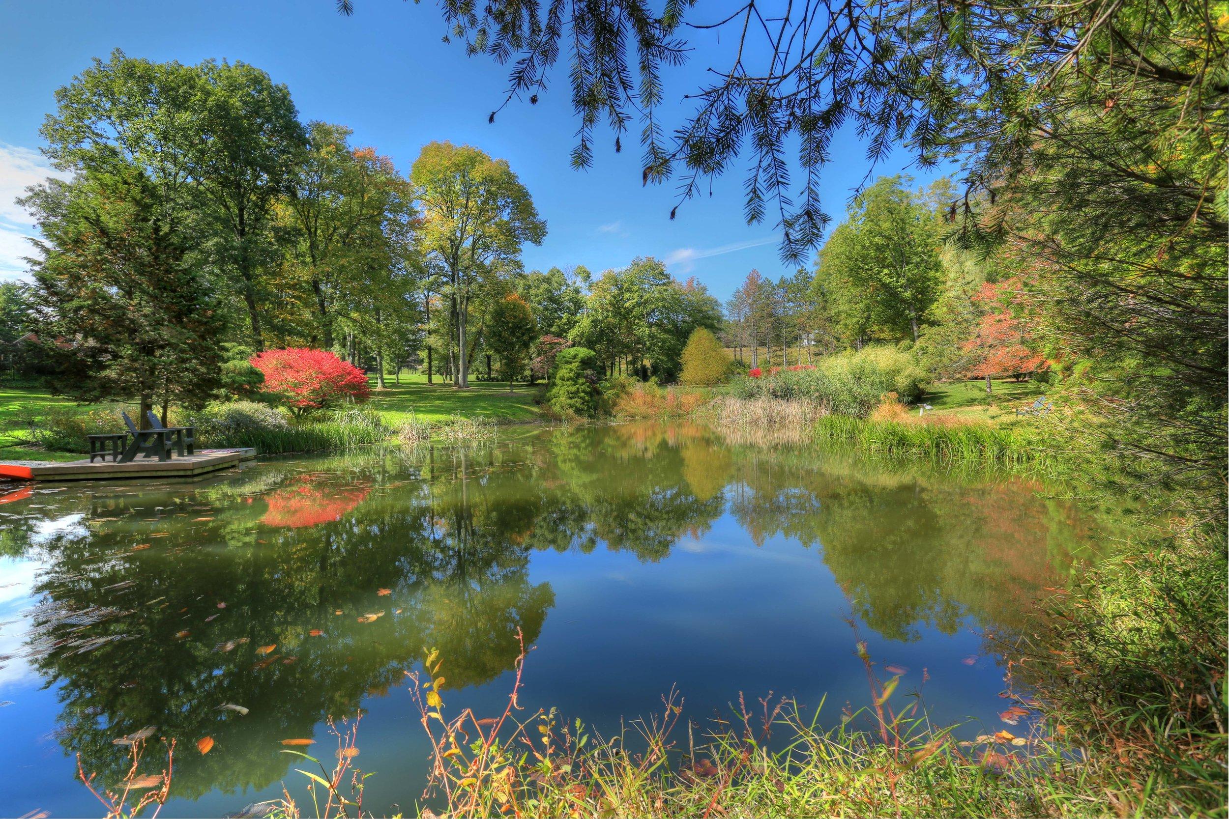 36 Spring fed pond at Beverly.jpg