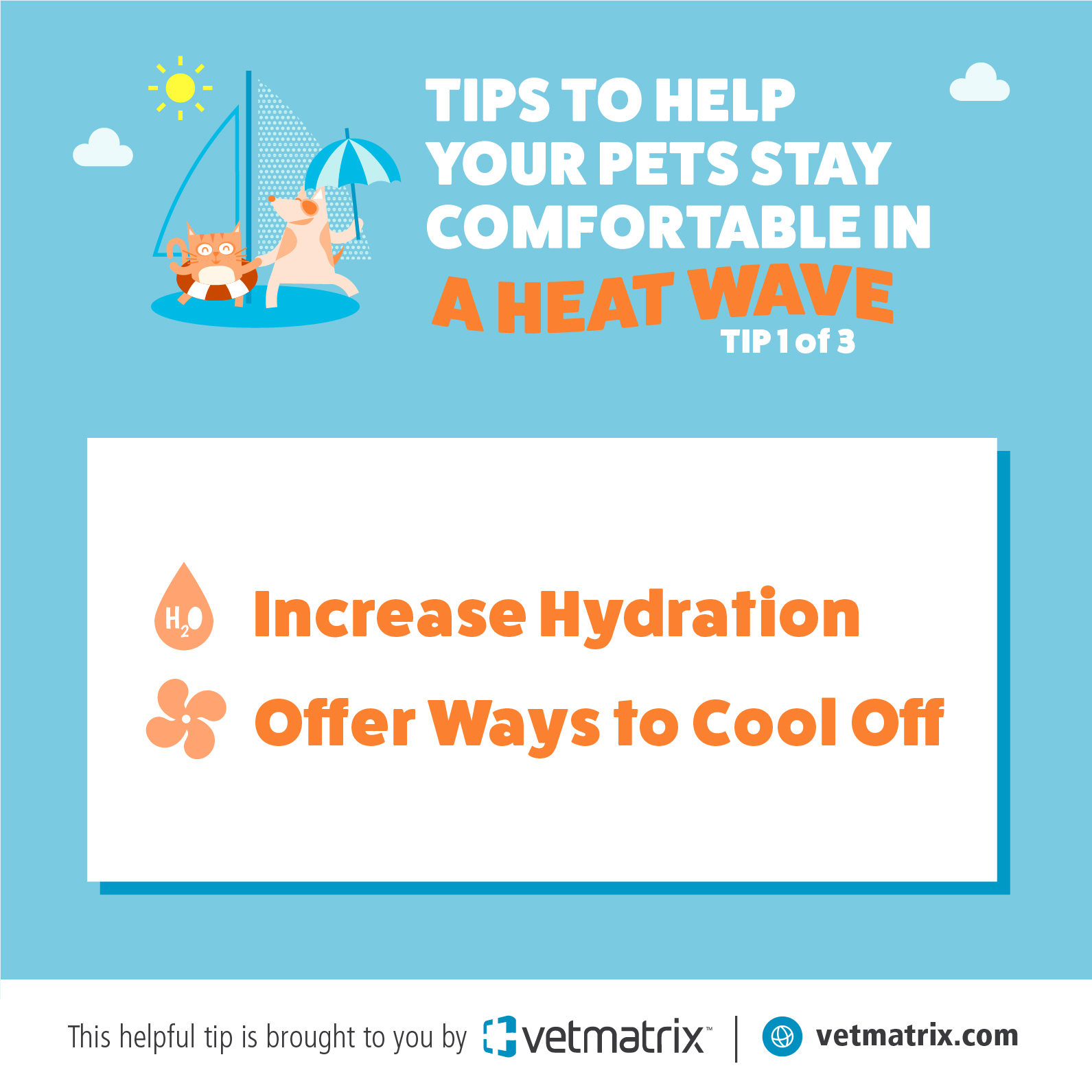 VetMatrix_Heat_Tip_1.jpg
