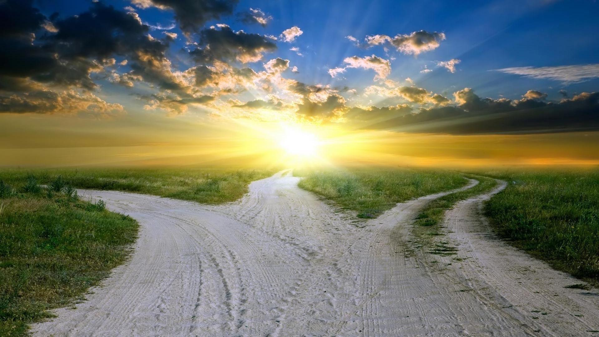 untold-pathways.png