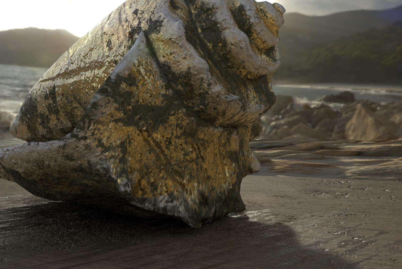 Conch Shell AR4.jpg