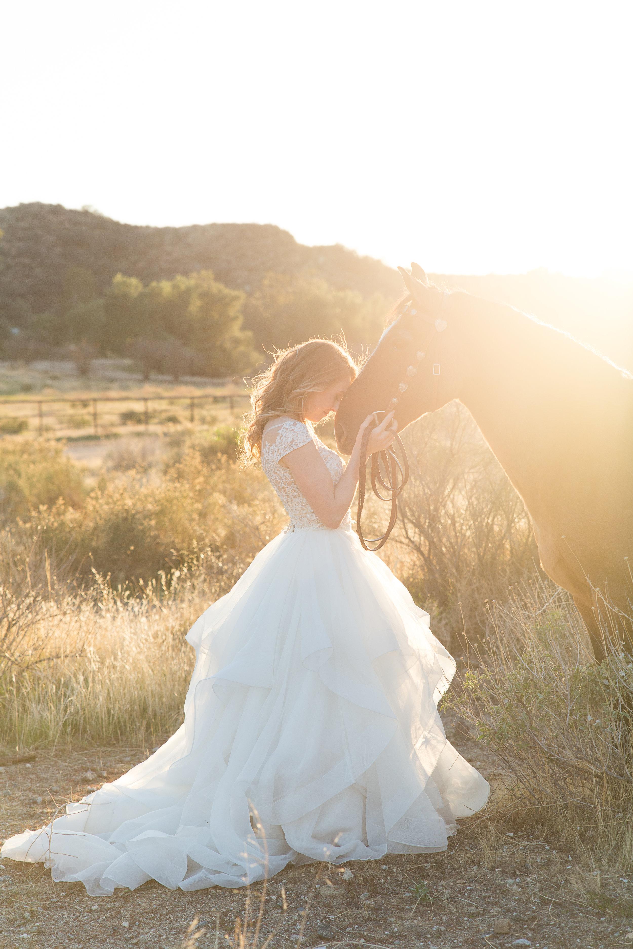 Equestrian Shoot-94.jpg