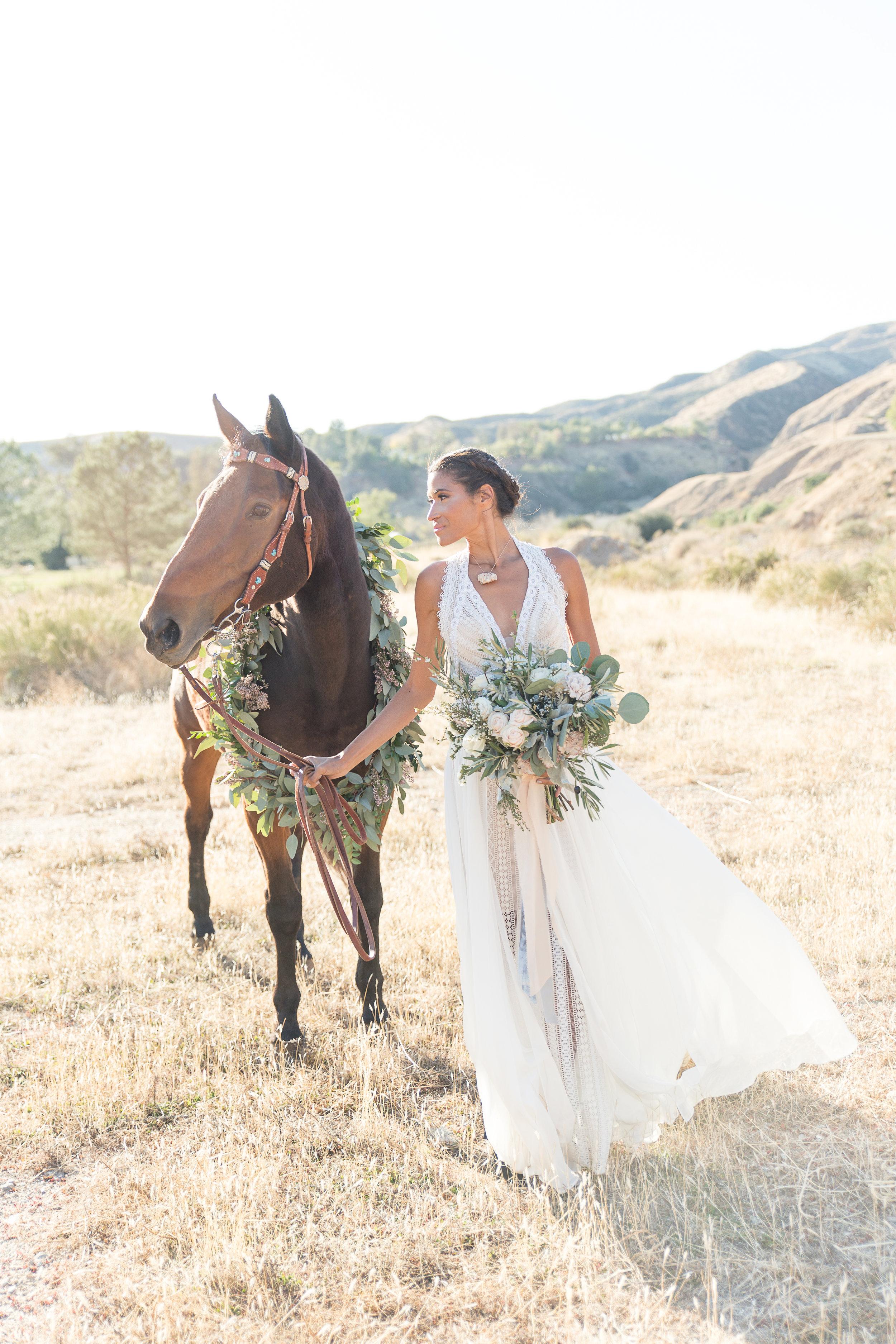 Equestrian Shoot-41.jpg