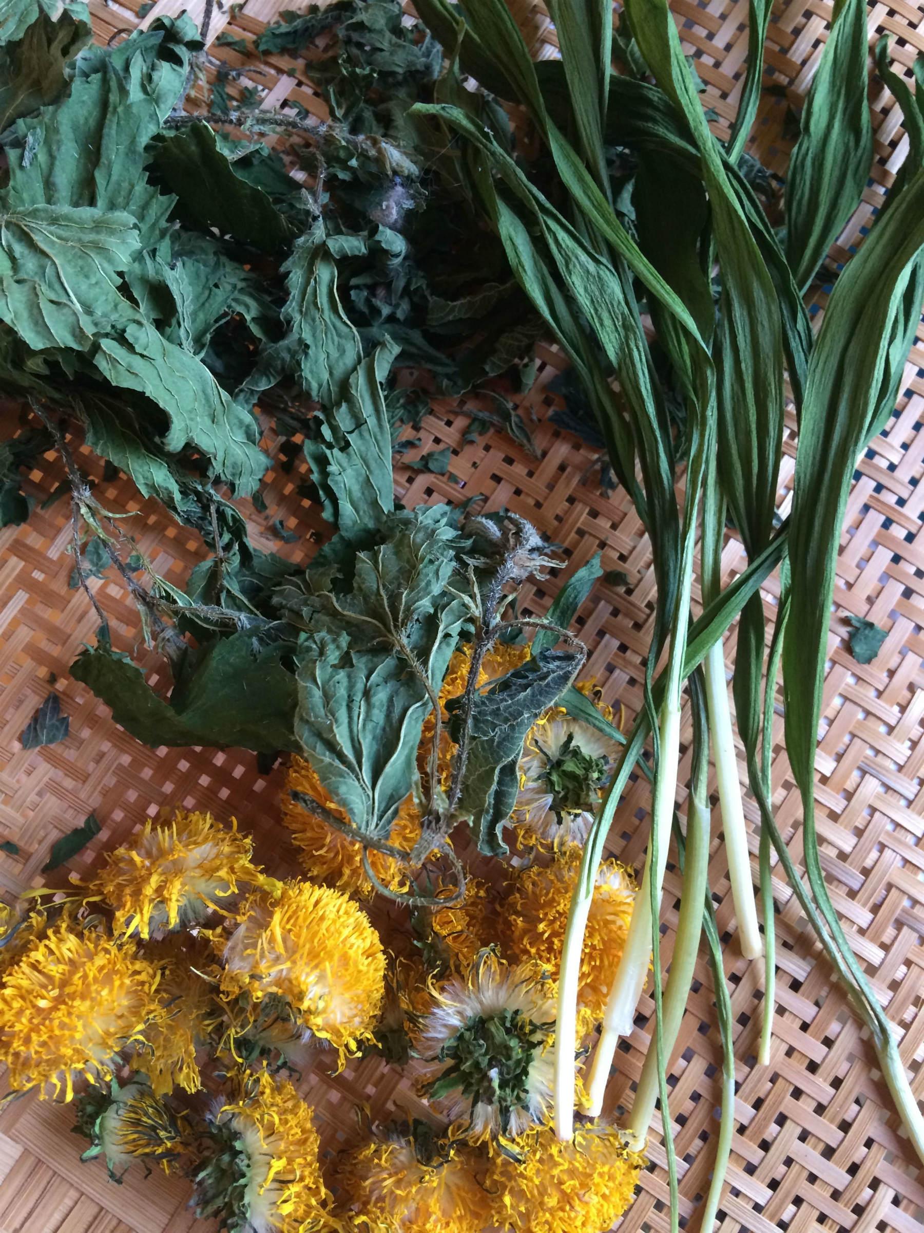 wild edibles: nettle, ramp & dandelion for gomasio