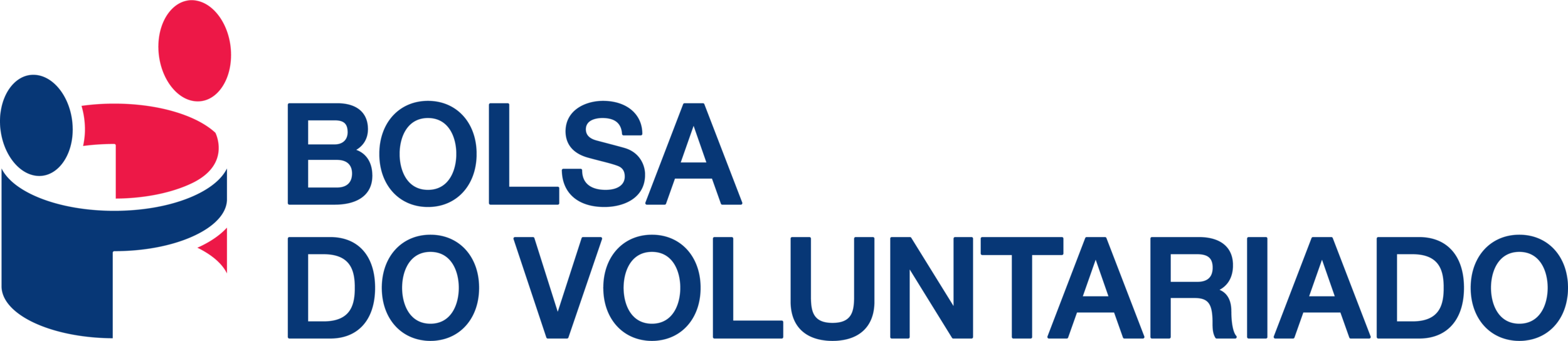 LogoBolsaDoVoluntariado.PNG