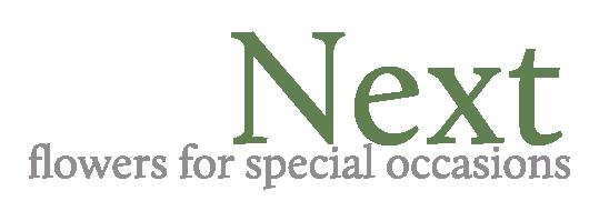 Next-Logo-Color.png